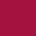 F2000 / 365 - RUBY                      / SOLID SILK CHARMEUSE 16 M/M