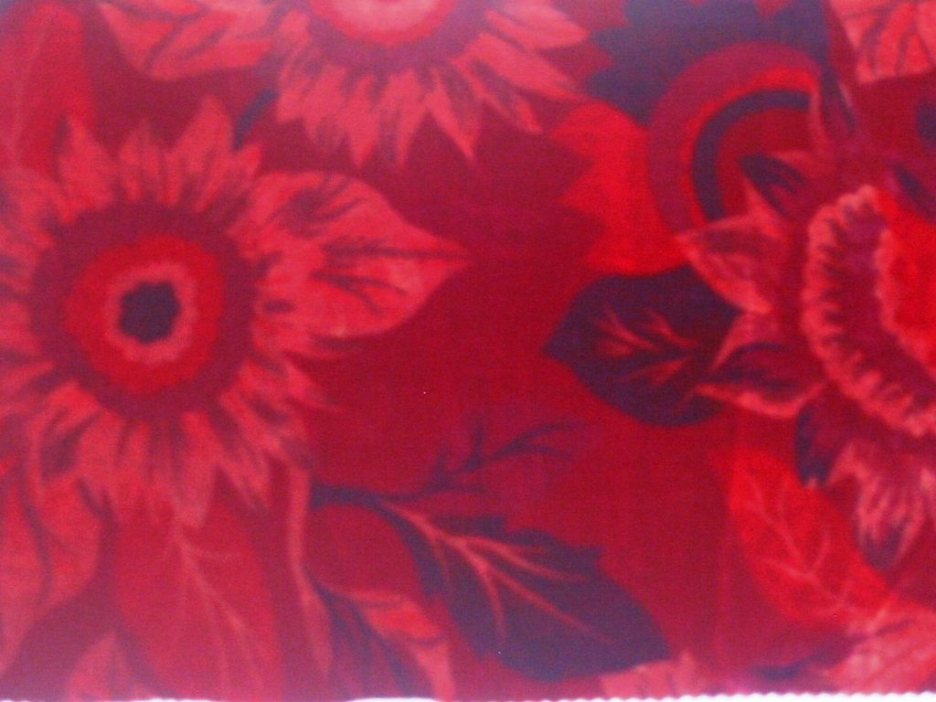 GP376 / RED         / SILK VELVET PRINT