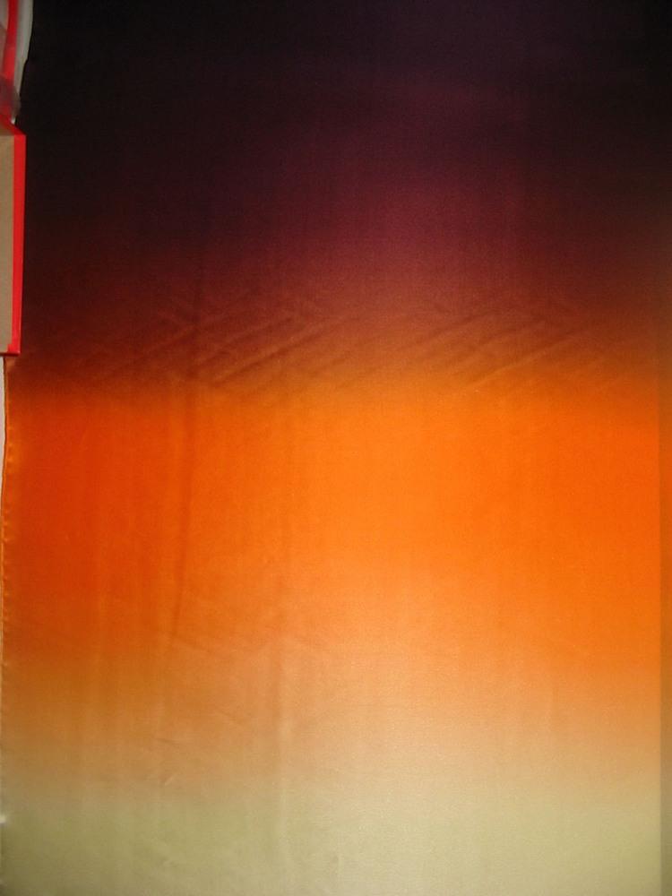 FIE-2006-169-1 / #2         / SILK CHIFFON OMBRE